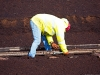 bnm-laborer-tightening-track-bolts-bloomhill-ie-10-03-12_0309-l