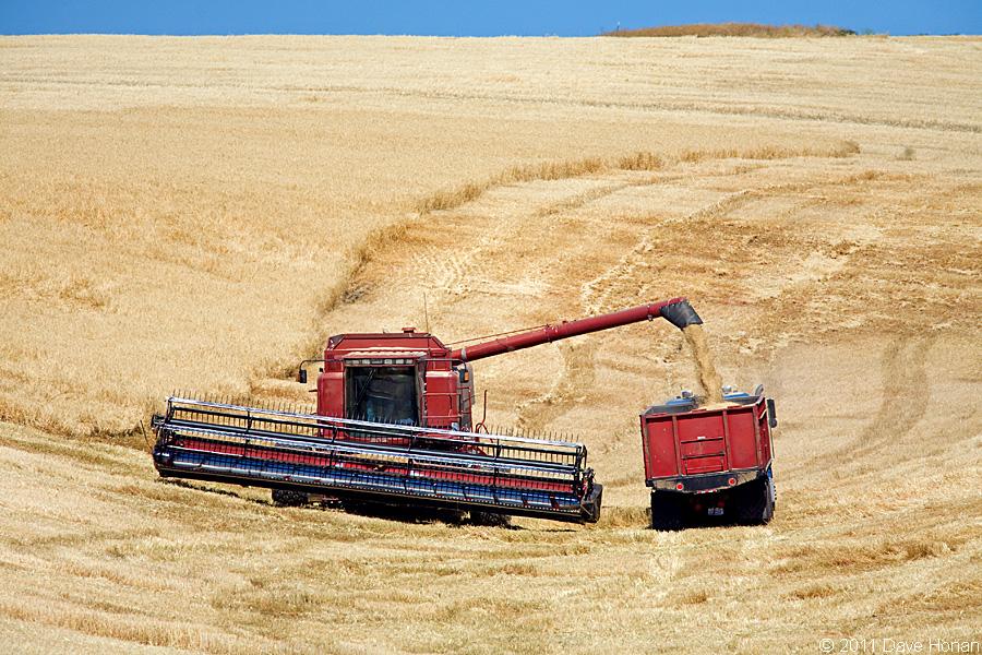 International Harvester - Lancaster, WA - 08-27-11