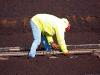 bnm-laborer-tightening-track-bolts-bloomhill-ie-10-03-12_0309-l