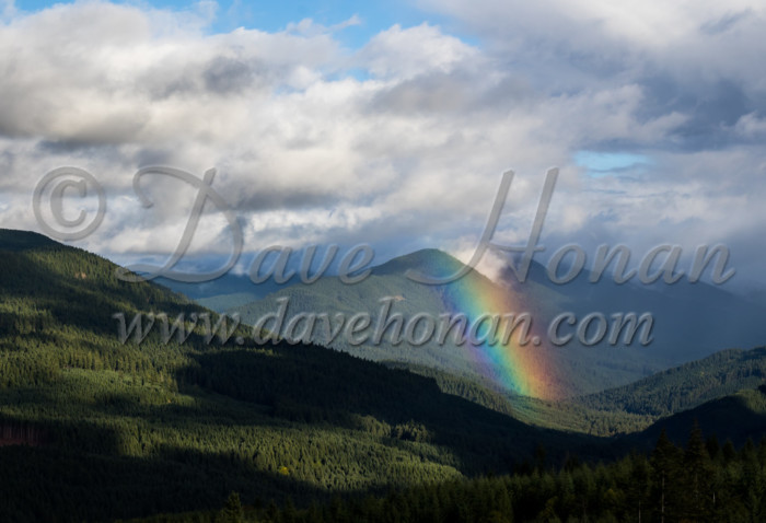 2017 Foothills of the Cascades