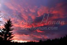 Trout Lake 100 Ride Camp