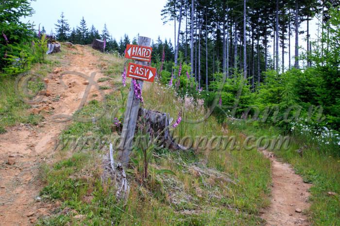 Creek to Capitol Peak - Easy or Hard